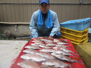 奥村釣船の2019年4月17日(水)2枚目の写真
