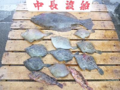 中長渡船の2019年4月20日(土)3枚目の写真