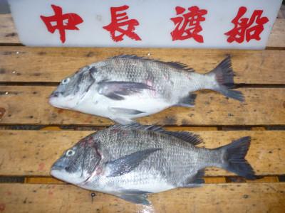 中長渡船の2019年4月24日(水)1枚目の写真