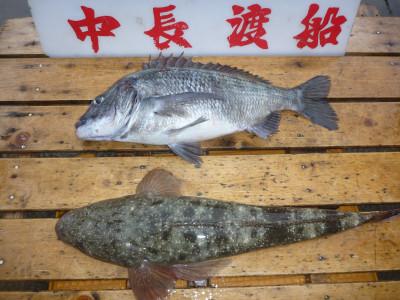 中長渡船の2019年4月24日(水)2枚目の写真