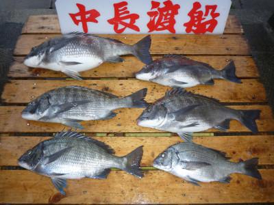 中長渡船の2019年4月25日(木)3枚目の写真