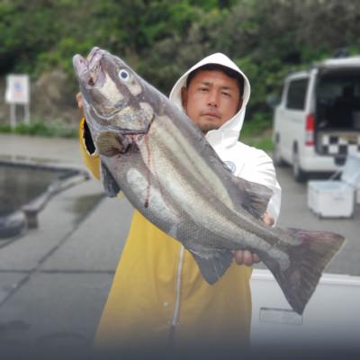 二宮丸の2019年4月26日(金)1枚目の写真