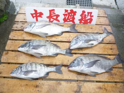 中長渡船の2019年4月26日(金)3枚目の写真