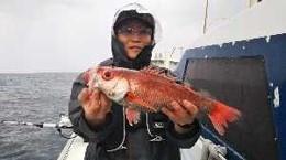 ともわ丸の2019年5月6日(月)1枚目の写真