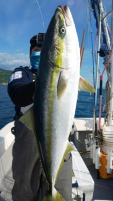 釣り船 海運丸の2019年5月15日(水)2枚目の写真