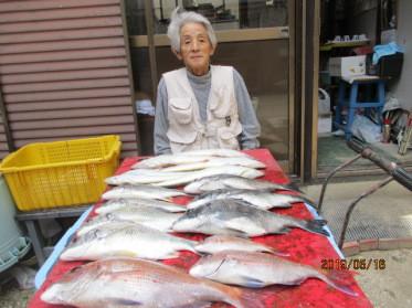 奥村釣船の2019年5月16日(木)3枚目の写真