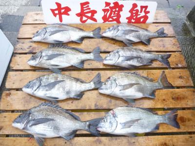 中長渡船の2019年5月19日(日)3枚目の写真