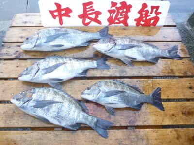 中長渡船の2019年5月23日(木)3枚目の写真