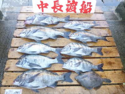 中長渡船の2019年5月24日(金)3枚目の写真
