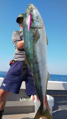 釣り船 海運丸の2019年5月24日(金)2枚目の写真