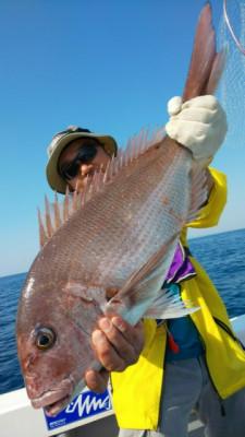 釣り船 海運丸の2019年5月24日(金)5枚目の写真