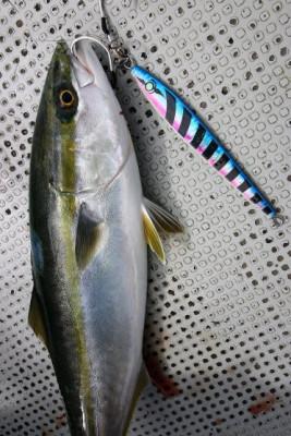 西岡遊漁の2019年5月20日(月)5枚目の写真