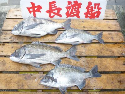 中長渡船の2019年5月31日(金)1枚目の写真