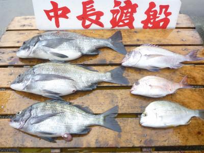 中長渡船の2019年5月31日(金)2枚目の写真