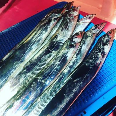 第八幸松丸の2019年5月31日(金)4枚目の写真