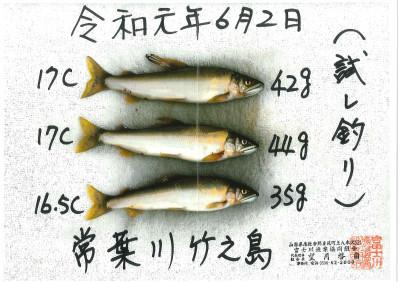 富士川漁業協同組合の2019年6月2日(日)2枚目の写真