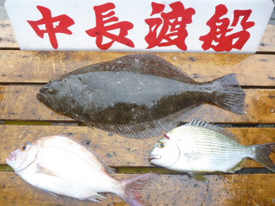 中長渡船の2019年6月14日(金)3枚目の写真