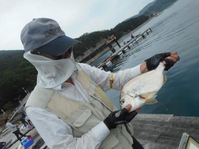 由良海つり公園&釣堀ランドの2019年6月23日(日)5枚目の写真