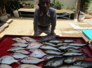 奥村釣船の2019年6月24日(月)2枚目の写真