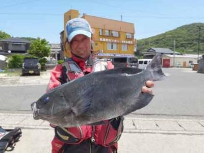 丸銀釣りセンターの2019年6月25日(火)3枚目の写真