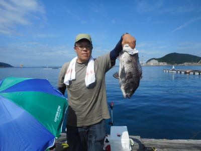 由良海つり公園&釣堀ランドの2019年6月28日(金)1枚目の写真