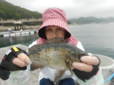 由良海つり公園&釣堀ランドの2019年6月29日(土)4枚目の写真