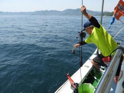 釣具の海友の2019年5月25日(土)2枚目の写真