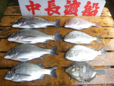 中長渡船の2019年7月12日(金)1枚目の写真
