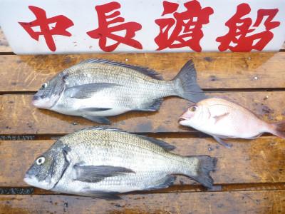 中長渡船の2019年7月14日(日)3枚目の写真