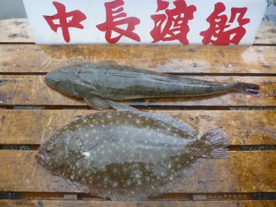 中長渡船の2019年7月21日(日)2枚目の写真