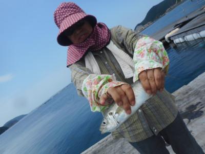 由良海つり公園&釣堀ランドの2019年7月23日(火)1枚目の写真