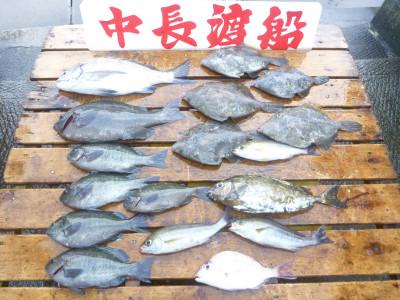 中長渡船の2019年7月24日(水)3枚目の写真