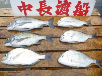 中長渡船の2019年7月26日(金)2枚目の写真