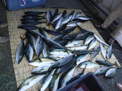 アラタニ釣具店の2019年8月10日(土)1枚目の写真