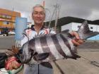 丸銀釣りセンターの2019年7月25日(木)1枚目の写真