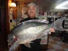 丸銀釣りセンターの2019年7月25日(木)4枚目の写真