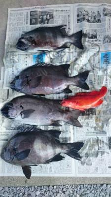 乙島丸の2019年7月16日(火)1枚目の写真
