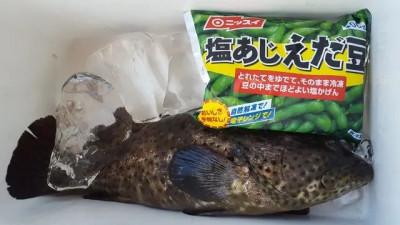 乙島丸の2019年8月4日(日)2枚目の写真