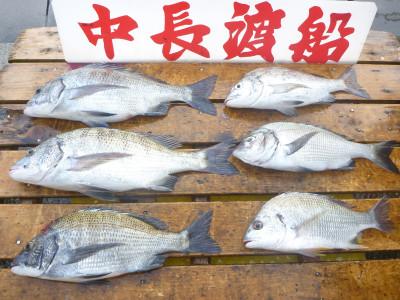 中長渡船の2019年8月22日(木)2枚目の写真