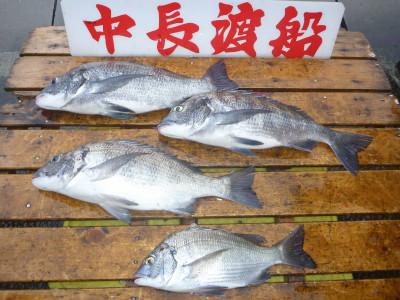 中長渡船の2019年8月22日(木)3枚目の写真