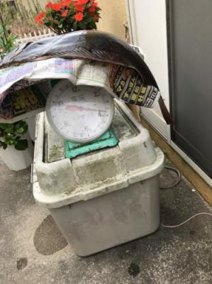 福田丸の2019年8月23日(金)3枚目の写真