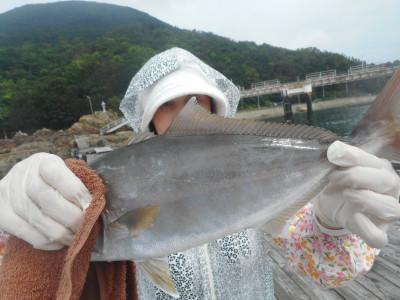 由良海つり公園&釣堀ランドの2019年8月24日(土)1枚目の写真