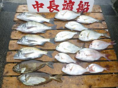 中長渡船の2019年8月24日(土)3枚目の写真
