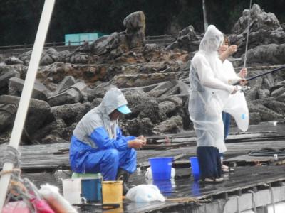 由良海つり公園&釣堀ランドの2019年8月30日(金)1枚目の写真