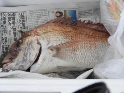 釣具の海友の2019年8月19日(月)1枚目の写真
