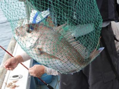 釣具の海友の2019年8月25日(日)4枚目の写真