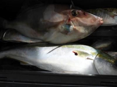 釣具の海友の2019年9月5日(木)5枚目の写真