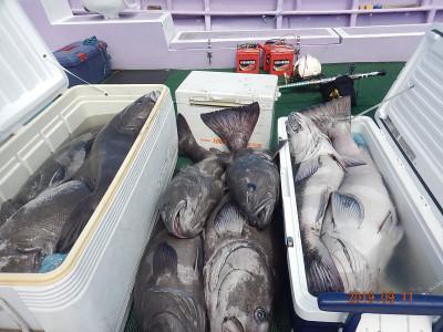 第十五隆栄丸の2019年9月11日(水)3枚目の写真