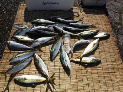 アラタニ釣具店の2019年9月14日(土)1枚目の写真