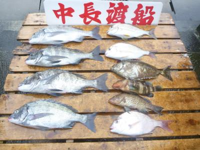 中長渡船の2019年9月20日(金)1枚目の写真